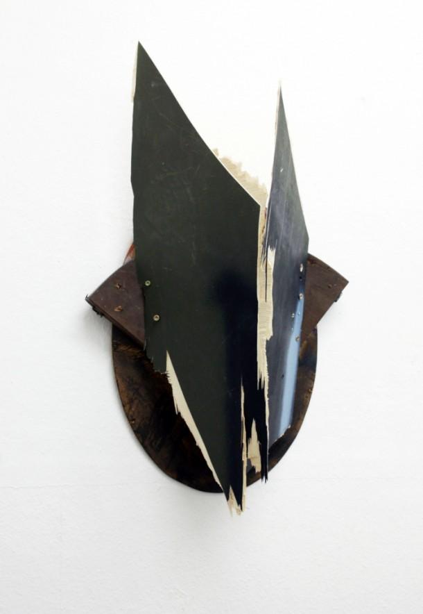 Raue Trophäe 65x36x22cm(1)