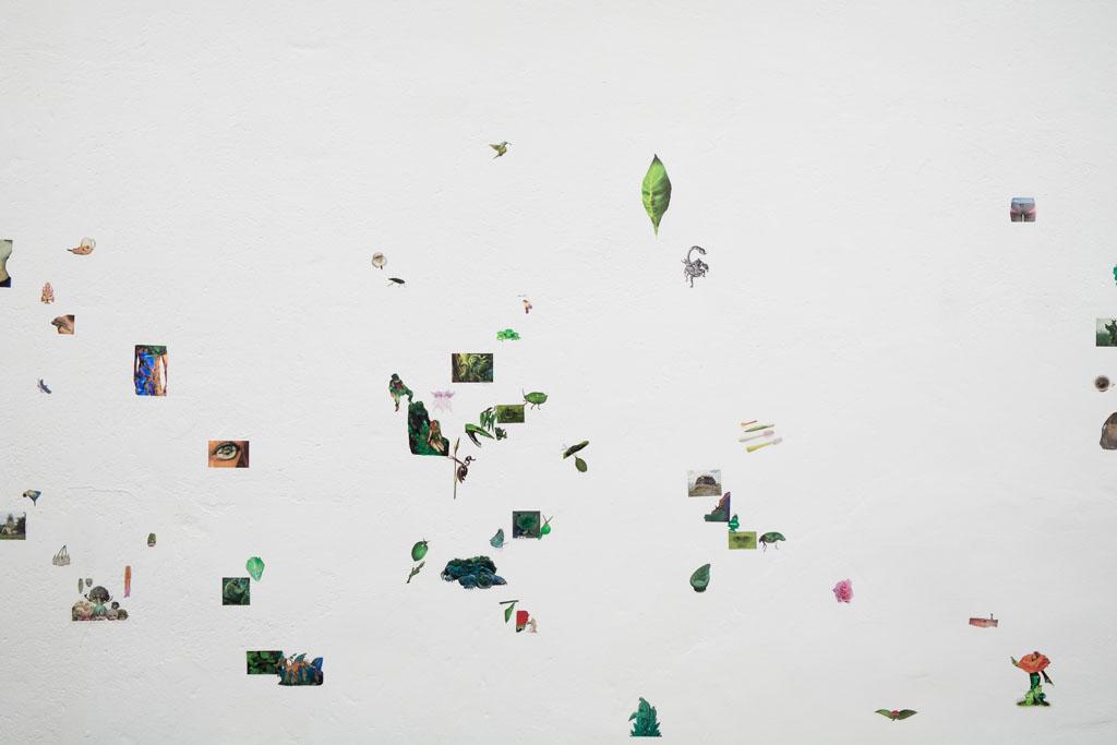 Elin-Gonzalez-Flora-Fauna-People-Objects-Detail-1