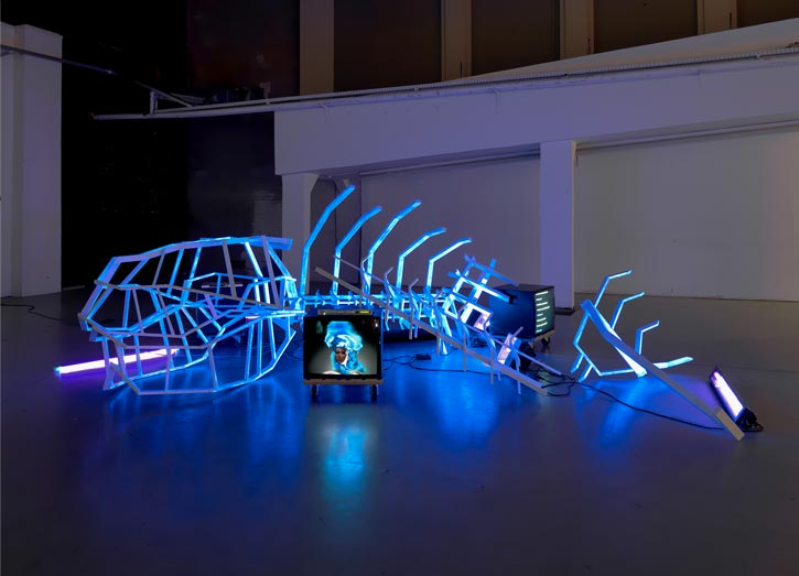 'The Cloud', Installation, Animation, Black light, 2010